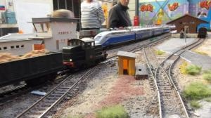 DSCF2600